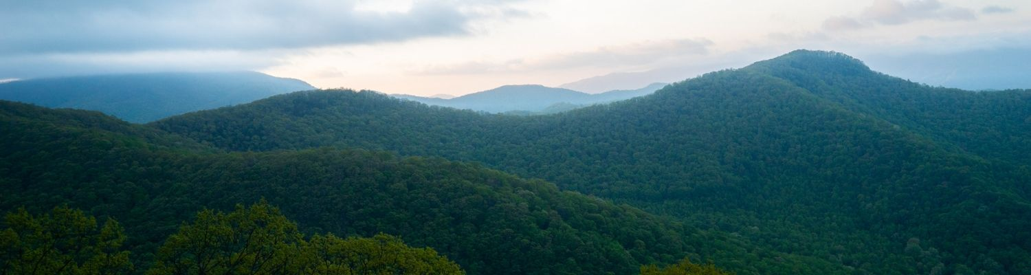 Newly Acquired Property to Conserve Headwaters of Little Tennessee River Basin