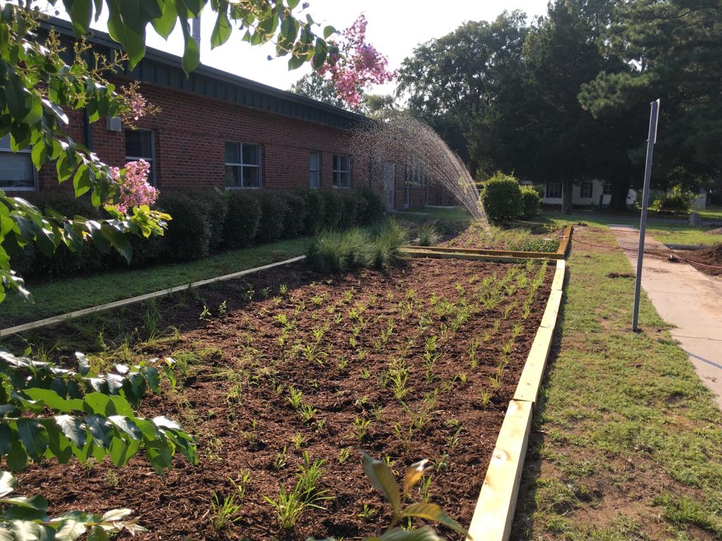 Princeville Rain Garden